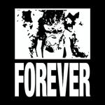Forever GTi005 [Grade 10]